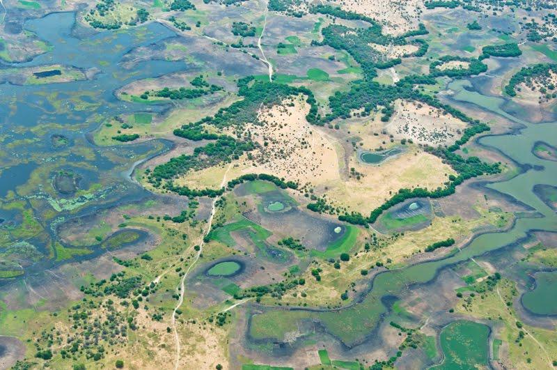 Csád-tó szigetekkel, nádsokkal, vizekkel tarkított terület, ilyen helyen táplálkozott Varbó (fotó: barth1003)