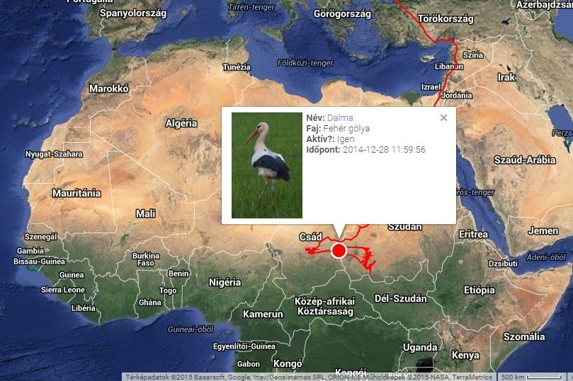 Dalma útvonala tavaly, jeladója 2014.12.28-én elhallgatott (forrás: satellitetracking.eu)
