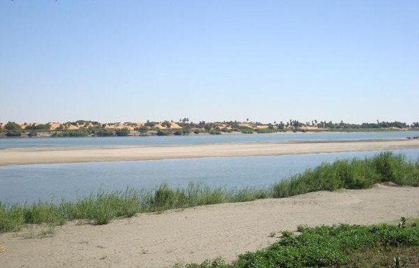 Ilyen zátonyon éjszakázhatott Horka és csapata a Nílus közepén (fotó: معاويه عبد الكريم)  Nílus datolyaliget