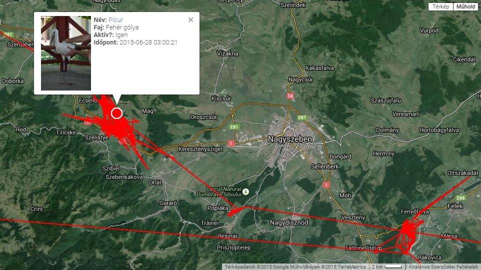 Picur erdélyi nyaralása (forrás: satellitetracking.eu)