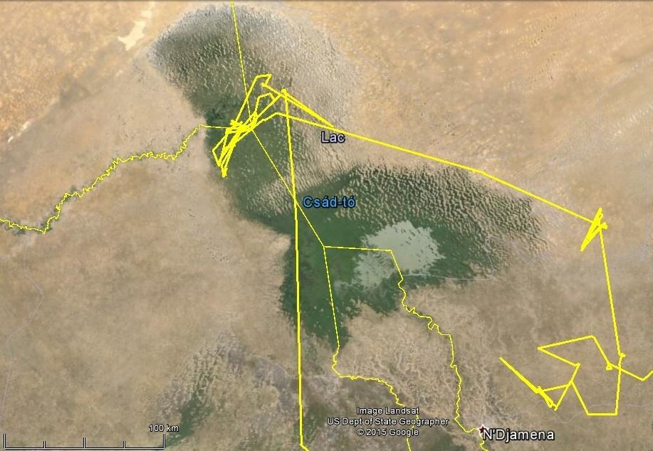Varbó mozgása a Csád-tó környékén, 2014 telén (forrás: satellitetracking.eu)